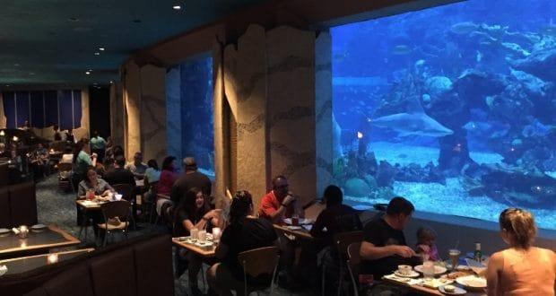 8 Restaurants With The Best Views At Walt Disney World